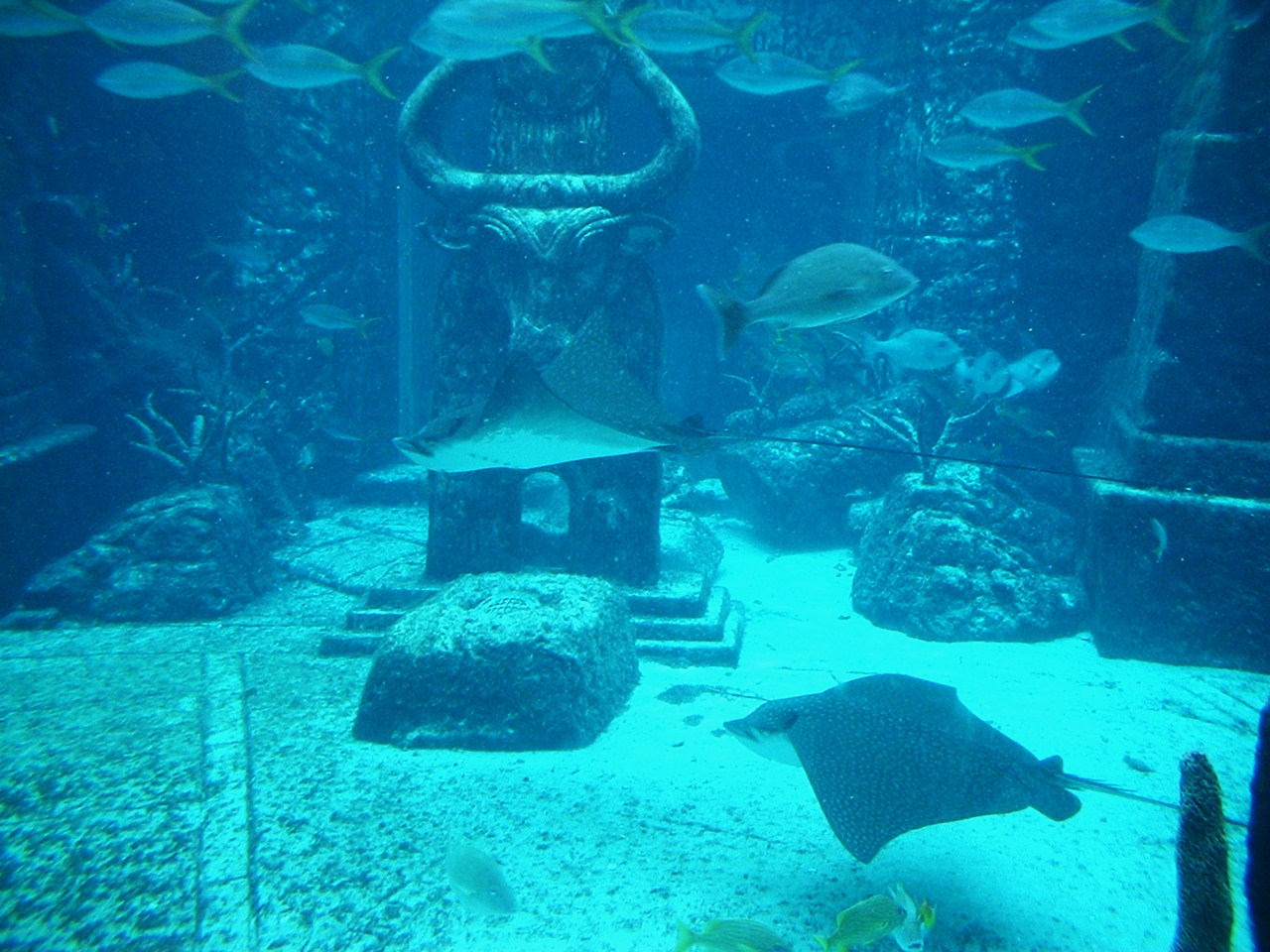 The Bahamas 700 Islands In The Sun Adventures And