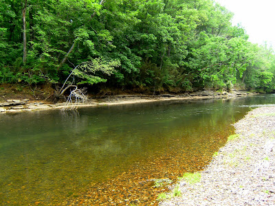 Southeastern fly fly fishing the elk river tennessee for Trout fishing in tennessee