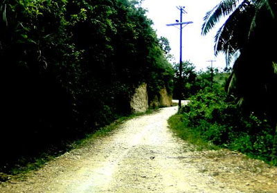 cebu_pictures_road