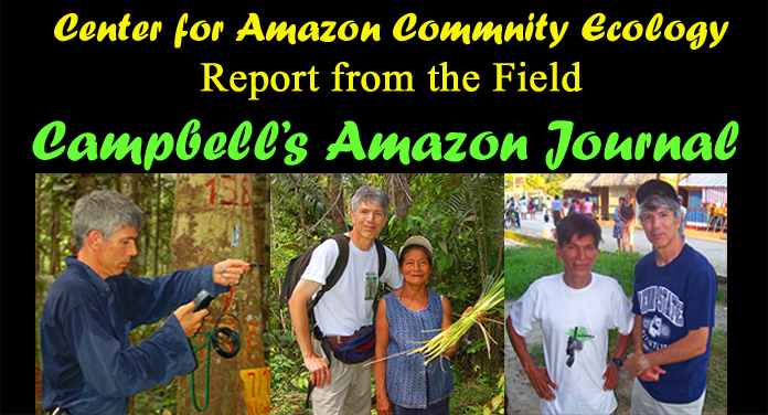 Campbell's Amazon Journal