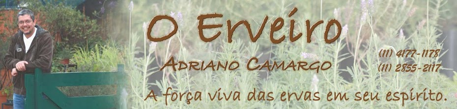 Blog do Erveiro