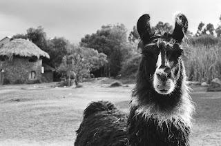 fotos+ +ensaio+ +1+737 Viajeros   Sabedorias ancestrais, Oruro e deserto de sal