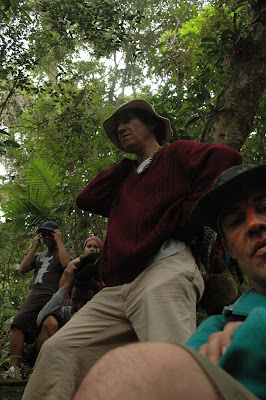 Donde Miras guarani