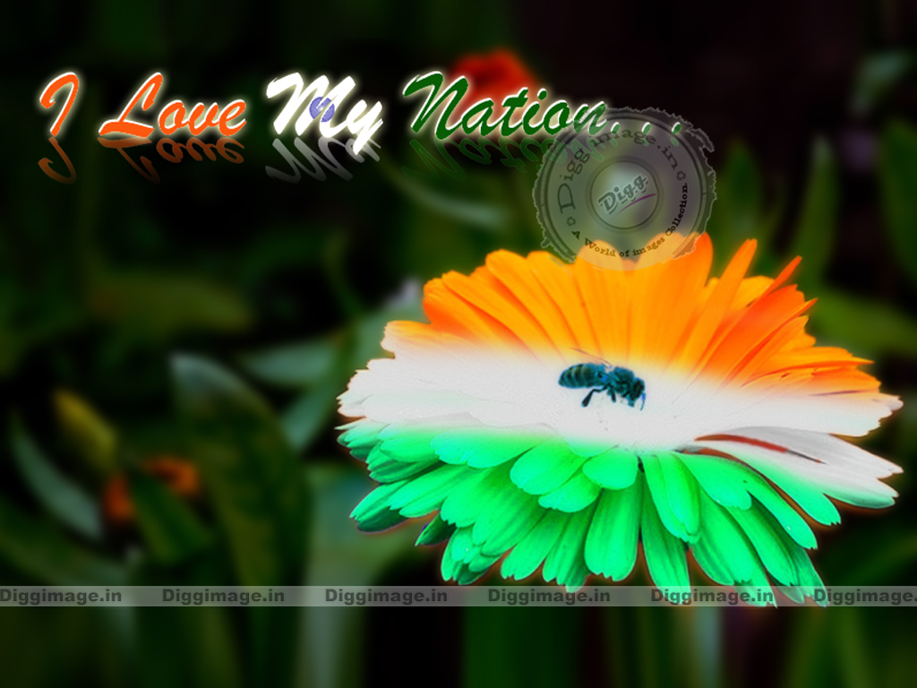 Cool Wallpaper Indian Flag 2015