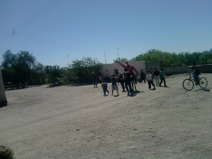 la tradicional paseada de judas en el burro .