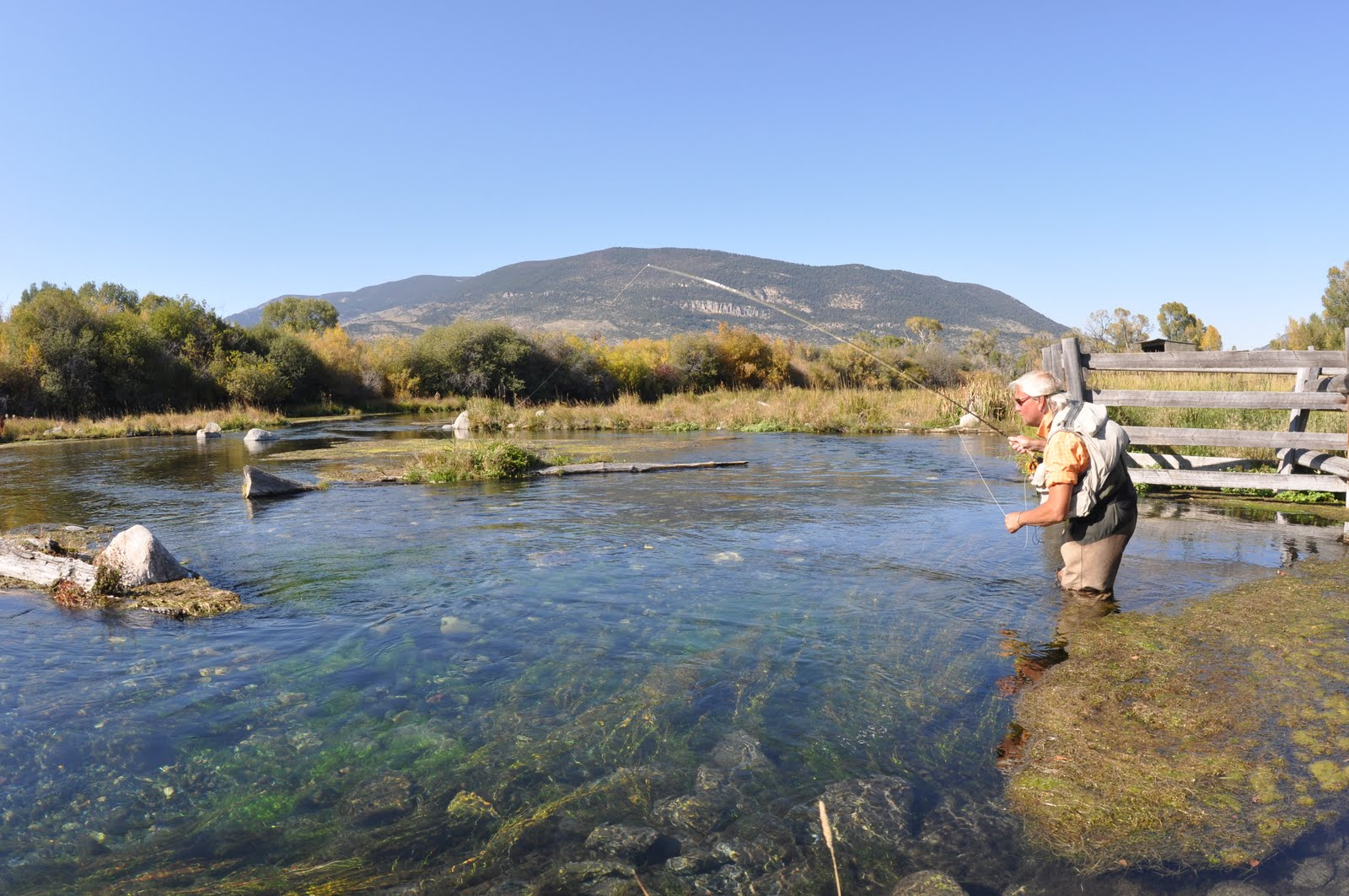 pool fishing for salmon and loved old paradise valley in montana