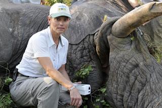 Rhino Rearcher from Palm Beach Zoo with Rhino