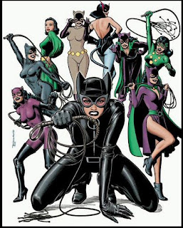 Selina Kyle is without a doubt one of the most important and well-known women in the DCU though most know her as Catwoman. Over the years her costume has ...  sc 1 st  superheroes & what not to wear: superheroes: Catwomanu0027s Closet full of Clothes...