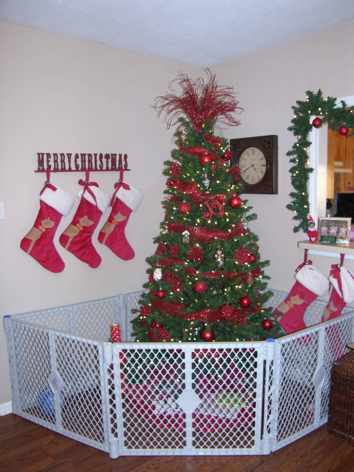 Siemsglusz Triplets: December 2010
