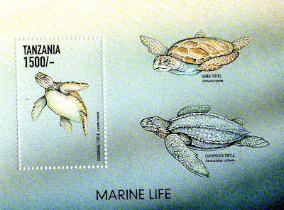a set of 3 Turtles stamps