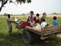 Silke mit Meute auf dem Eselskarren
