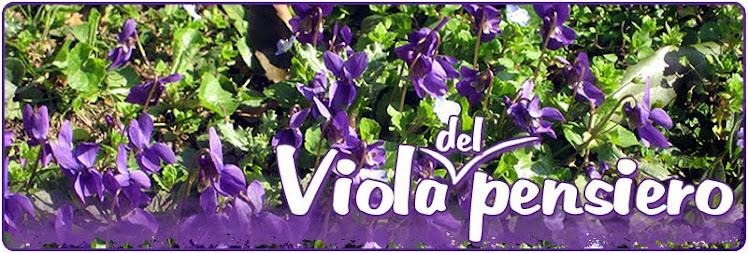 violapensiero