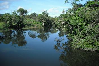 Rio Tartarugalzinho