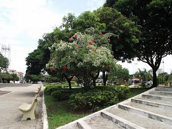 Praça da Bandeira