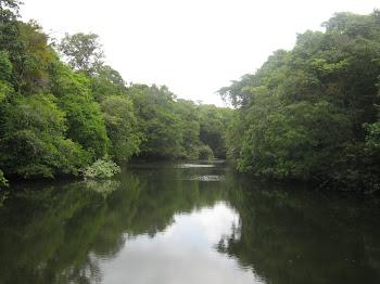 Rio Rego Grande