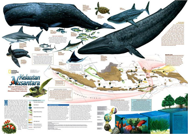 Laut Nusantara (Majalah National Geographic Indonesia)