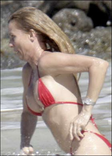 Nicolette Sheridan nipple display