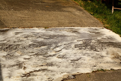 duck fluff a greener way to clean concrete