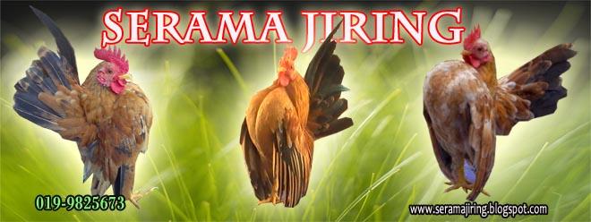 Serama Jiring