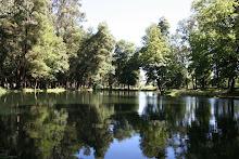 Laguna Parque Isabel Riquelme