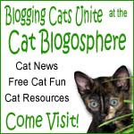Blogging Cats Unite!