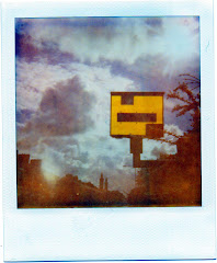 polaroid composition