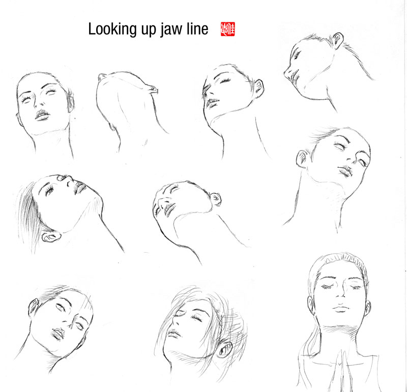 Line Drawing Face Profile : Randy chen some tutorial reference sketches