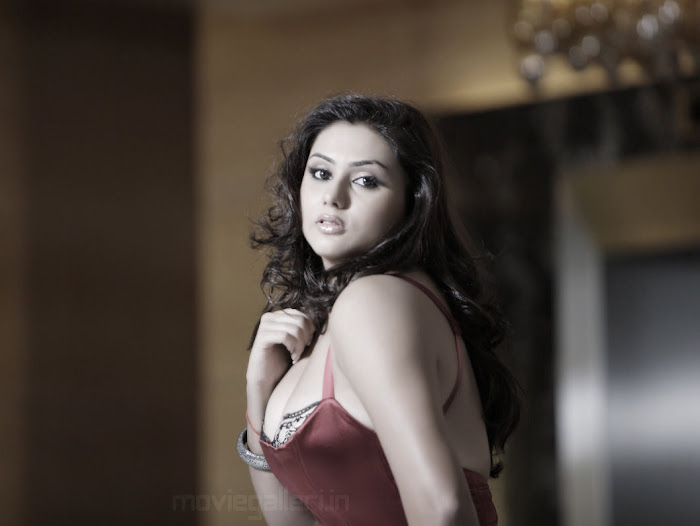 namitha beautiful hot photoshoot