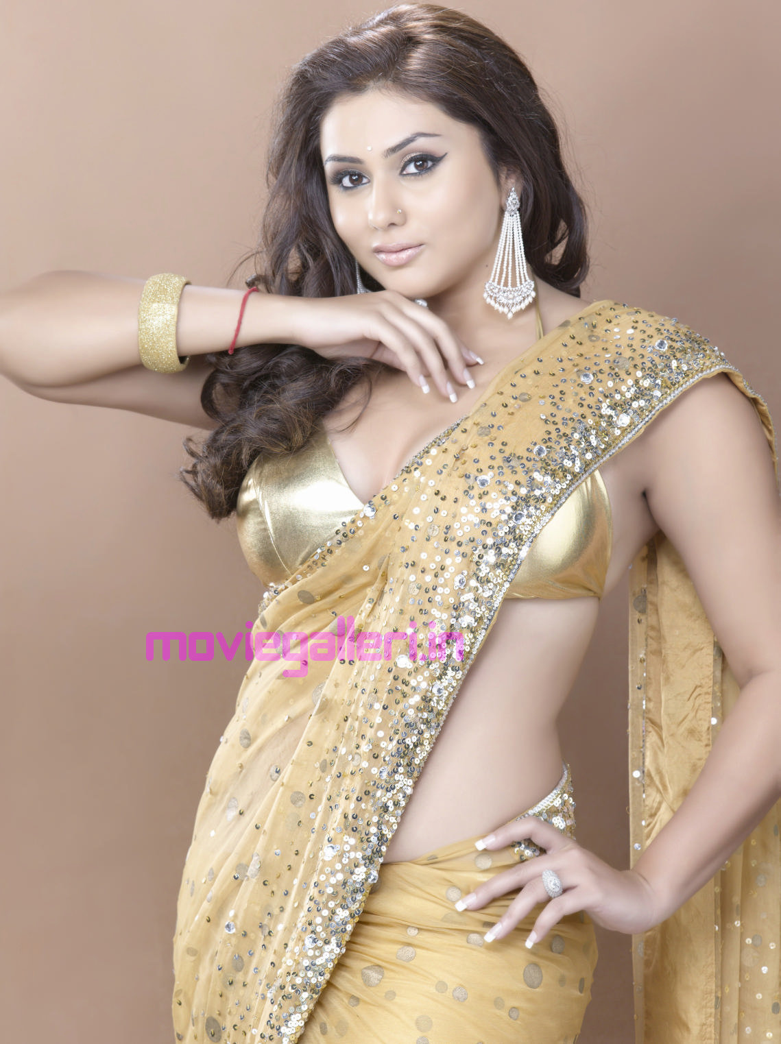 Namitha Hot Wallpapers Photo