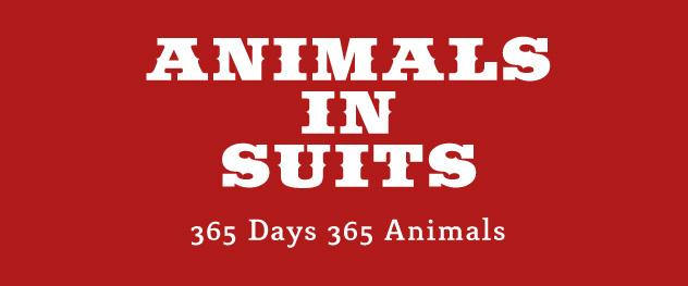 Animals in Suits