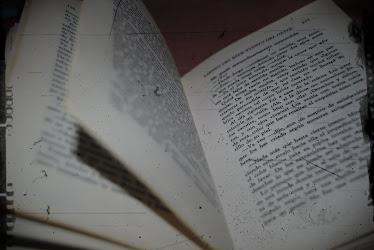 Si no puedo pasar página, la quemaré.