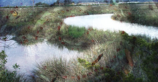 marsh mosaic merged