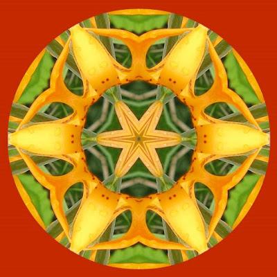 mandala tutorial image