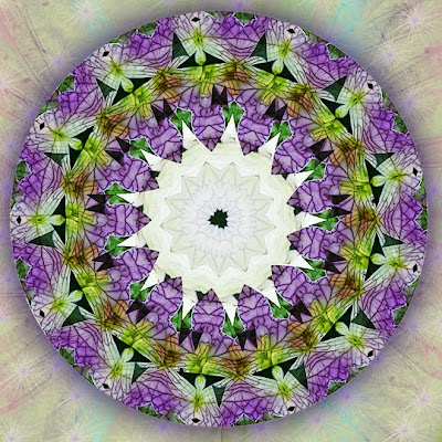 spring illumination mandala