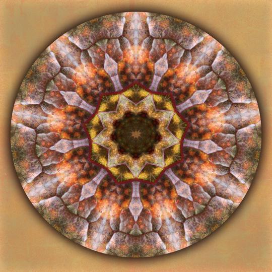autumn portal mandala