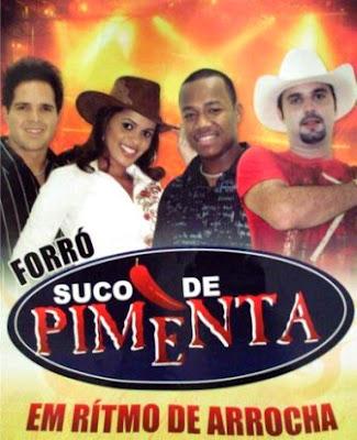 Suco De Pimenta   Em Ritmo De Arrocha | músicas