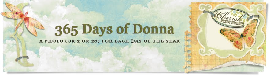 365 Days of Donna
