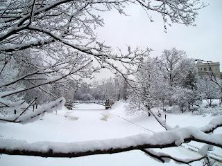 http://4.bp.blogspot.com/_elG77RDcYKk/TTZcUl82WGI/AAAAAAAAAA8/iYRGCmwps_A/s1600/riga-in-the-snow.jpg