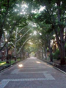 UPenn and Locust Walk