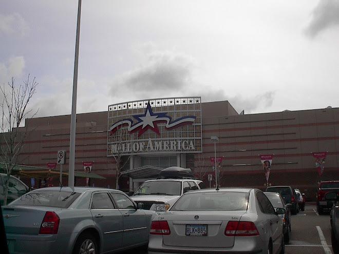 Friend mall movie msn n partying