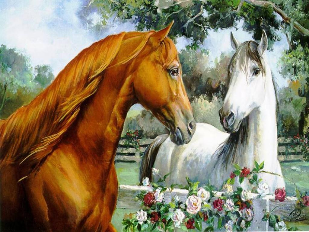 [horse+love]