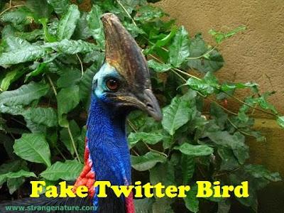 Fake Twitter Birds