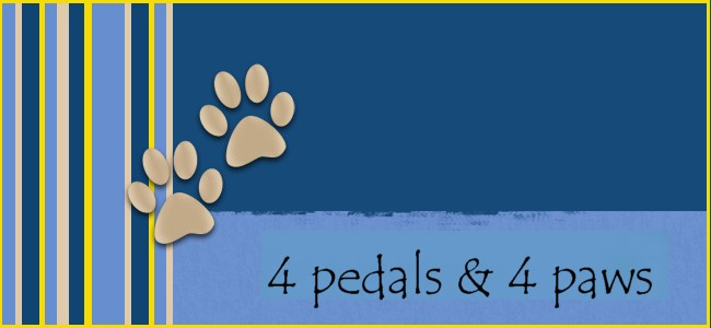 4 pedals & 4 paws