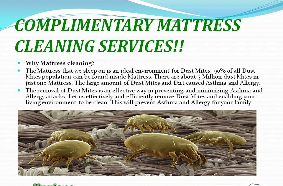 HYGIENE COVE plimentary Cleaning Services Eclipse