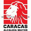ALCALDIA MAYOR