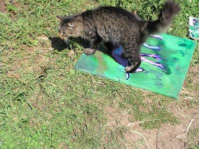 photos of Farm cat