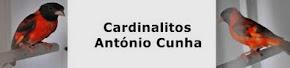 @ CARDINALITOS @