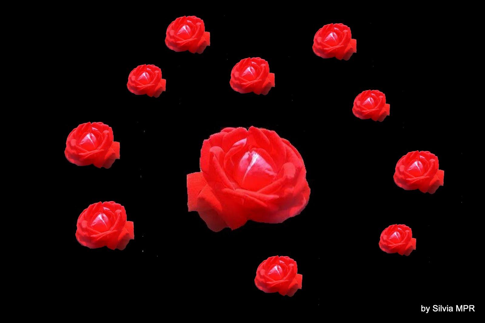 http://4.bp.blogspot.com/_epxNW-l6NdI/S7uP3yqzO7I/AAAAAAAALmE/meeDqzS1SLE/s1600/flores+rosas+rojas+wallpapers+5120x3413.jpg