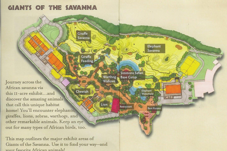 The Dallas Cook Book: Savanna Smiles at the Dallas Zoo on