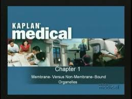 Download Usmle Step1 Webprep From Kaplan – Physiology